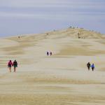 Dunes Arcachon